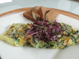 Baby Greens Omelette