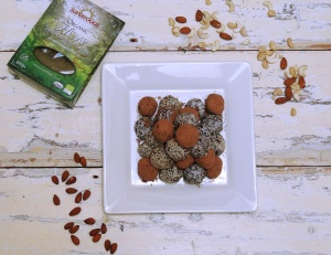 Nutty Hemp Protein Balls 1
