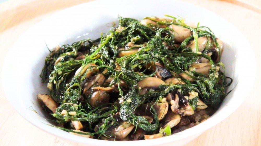 fennel and mushroom 1