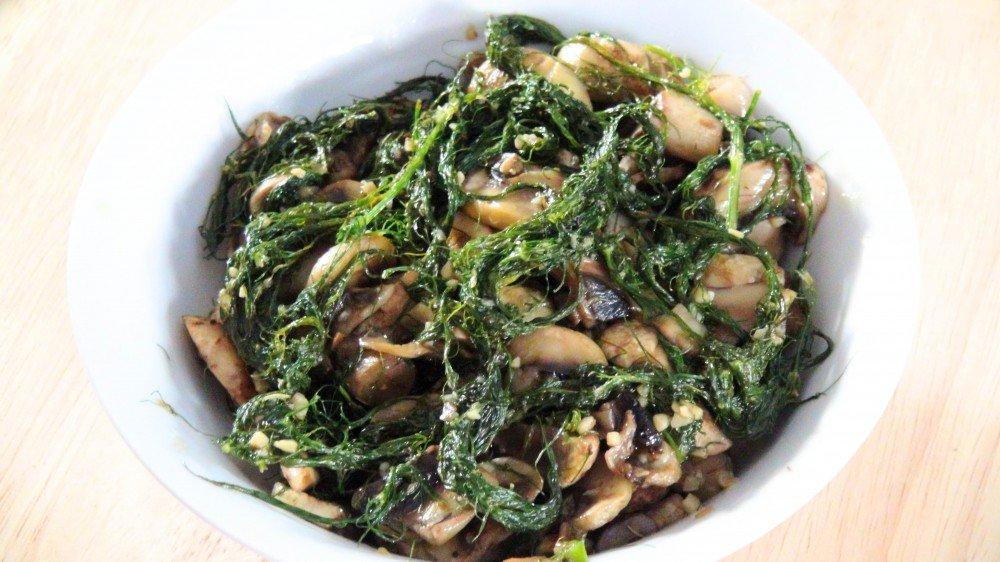 fennel and mushroom 2
