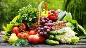 Interpreting Nutritional Information and Ingredients