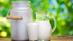 Should We really Be Drinking Cows Milk? 2