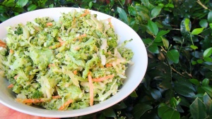 Broccoli and cabbage slaw 1